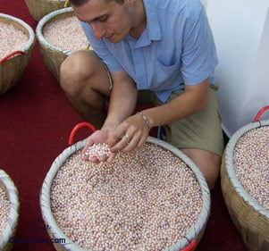 Examen de la dernière récolte effectuée au sein de l'une de nos fermes partenaires