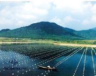 lac où l'on pratique la Perliculture