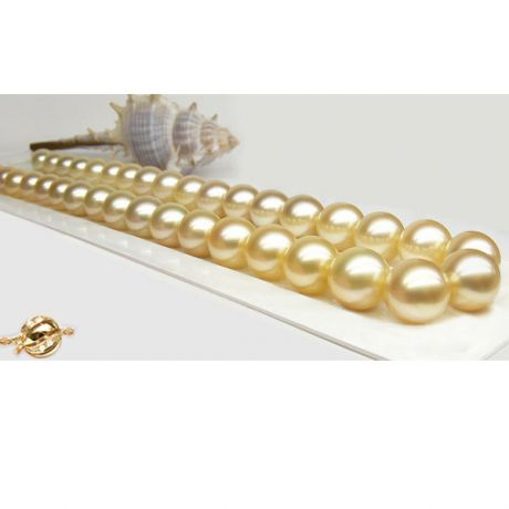 Collier perles d'Australie dorées - 9/11mm - AAA