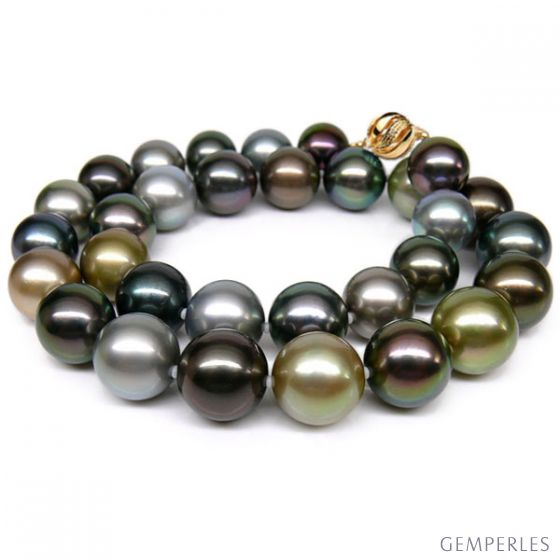 Collier perle Tahiti - Perles de culture multicolores - 12/14mm, AAA