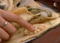 Claire, examinant la nacre de la coquille. Les perles sont recouvertes sous le manteau protecteur du mollusque