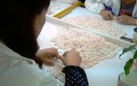 Ouvrière perlière durant la phase de tri des perles de culture d'eau douce