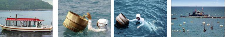 Ama, pêcheuses de perles au Japon