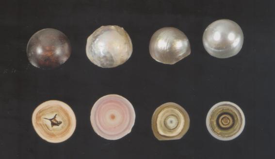 4 perles naturelles. Le coeur est très différent des ultimes couches qui seules, sont nacrées