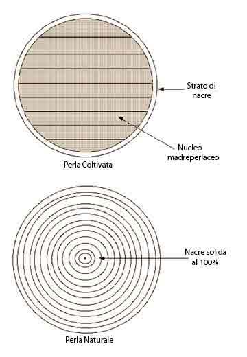 Sezione delle perle naturali e coltivate