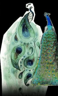 Représentation du paon à la gouache