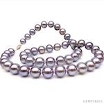Collier Perles de Culture Eau Douce Lavandes
