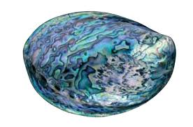 Opale marine