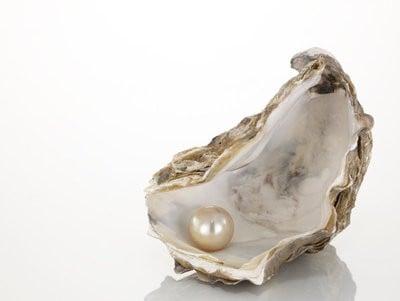 La perle, conséquence d'un parasite