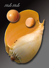 Perles de melo