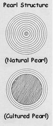 Structure de la perle